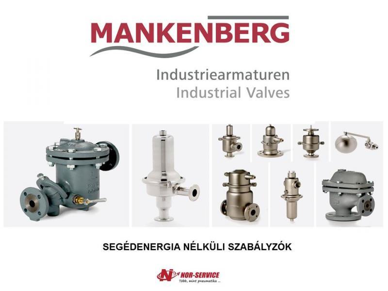 Mankenberg szabályzók